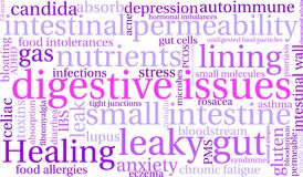 Digestive Issues Word Cloud. On a white background Royalty Free Stock Photography