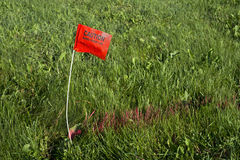 Digger Hotline Flag Buried Electrical Power Line. A red flag and red paint marks the path of a buried electrical power line. People can call Digger Hotline to royalty free stock photos