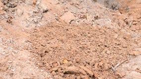 digging Arcilla que lanza en la tierra metrajes