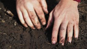 Digging in the dirt with his bare hands. Soil. Homeless, hopeless, homeless. Close up.