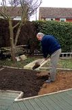 Digging the garden. A view of a senior male digging his garden ready for planting vegetables Royalty Free Stock Photo