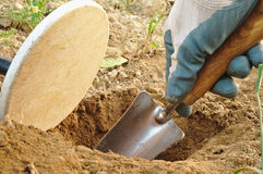 Digging hole when metal detecting Royalty Free Stock Photo