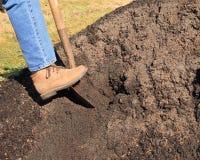 Digging in pile of topsoil