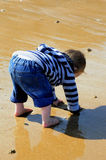 Digging in the sand Royalty Free Stock Photos