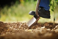 Digging soil Royalty Free Stock Images