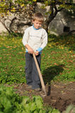 Digging soil. Young boy working in a garden, digging soil Royalty Free Stock Photography