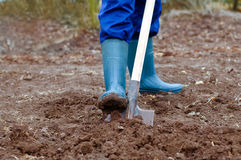 Digging soil. Close up of a man digging soil with shovel in rubber boots and gloves Royalty Free Stock Photo