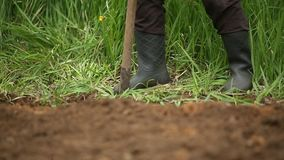 Digging spring soil with shovel. Close-up. stock video