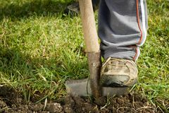 Digging spring soil with shovel. Close-up stock photography