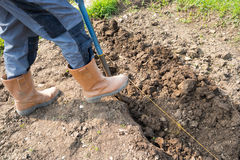 Digging Trench royalty free stock image