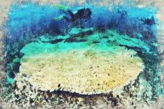 Digitaal die Art Impasto Oil Painting door Fotograaf wordt gecreeerd vector illustratie