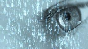 Digitaal oog vector illustratie