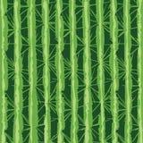 Digitaal remastered cactustextuur, op mijn eigen foto van een cactusboom die wordt gebaseerd Stock Foto's