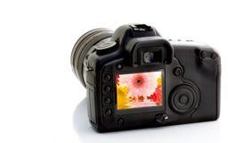 Digitaces SLR Imágenes de archivo libres de regalías