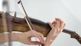Digitación de dos muchachas las secuencias que tocan en los violines Cierre para arriba almacen de metraje de vídeo