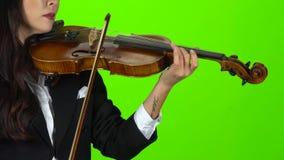 Digitación de la muchacha las secuencias que juegan en un violín Cierre para arriba Pantalla verde almacen de video