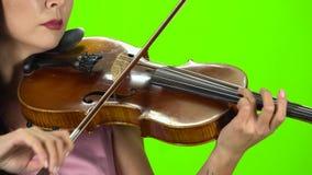 Digitación de la muchacha las secuencias que juegan en un violín marrón Cierre para arriba Pantalla verde almacen de video