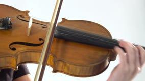 Digitación de la muchacha las secuencias que tocan el violín Cierre para arriba Fondo blanco almacen de video