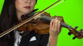 Digitación de la mujer las secuencias que tocan el violín Cierre para arriba Pantalla verde almacen de video