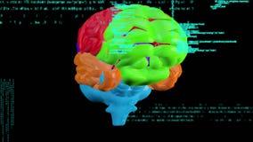 Multicolored rotating brain