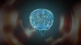 Digital composite of the human brain