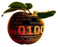 Digital apple. Apple with binary data on the skin Stock Photos