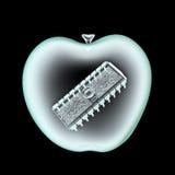 Digital apple x-ray Royalty Free Stock Photo