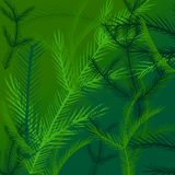 Digital Background. Digital graphic, for use as a background. Pine trees Royalty Free Illustration
