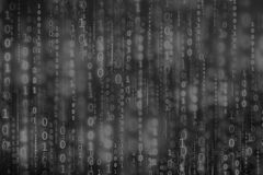 Digital binary code matrix background Royalty Free Stock Image