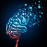 Digital Brain Royalty Free Stock Image