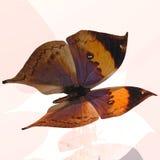 Digital Butterfly Stock Image
