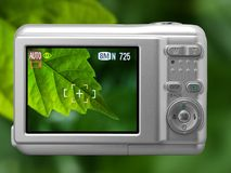 Digital camera. On the display leaf royalty free stock photos
