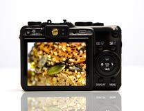Digital camera. Back view of digital camera stock image