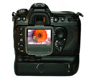 Digital Camera. This is a picture of my Nikon D200 digital camera with one of my pictures in the view screen Royalty Free Stock Photography