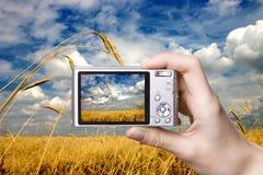 Digital camera in hand. Landscape Stock Image