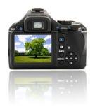 Digital camera landscape Royalty Free Stock Images