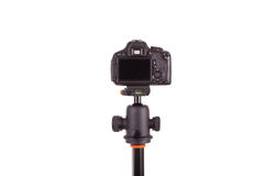 Digital camera mounted on tripod isolated on white background Royalty Free Stock Images