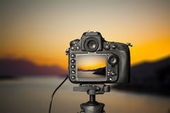 Digital camera the night view. Beautiful colors Stock Images