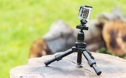 Digital camera. Small digital camera on tripod Stock Photo