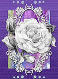 Digital card with rose and watercolor background Royalty Free Stock Images