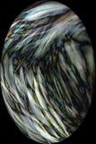 Digital changée, micrographe abstrait de soie d'araignée d'un Web Photo stock