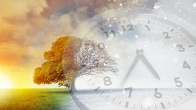 Beautiful tree beside a sunset. Digital composite of a beautiful tree beside a sunset with an analogue clock in the foreground vector illustration
