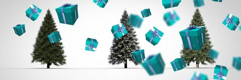 Christmas trees and presents. Digital composite of Christmas trees and presents Royalty Free Stock Photo