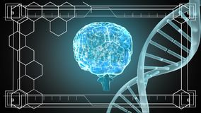 DNA and brain rotating