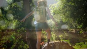 Woman hiking in the forest. Digital composite of a female hiker climbing through a log in the forest with bokeh light effects stock video footage