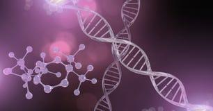 Genetic DNA sparkles. Digital composite of Genetic DNA sparkles Stock Images