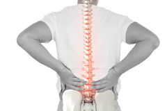 Digital composite of highlighted spine of man with back pain. Against white background Stock Image