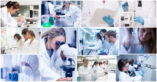 Scientific research collage. Digital composite of scientific research collage Stock Photos