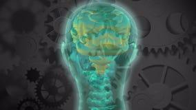 Translucent head and brain rotating