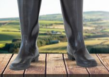 Wellington boots standing on wood in front of nature green landscape Stock Photos